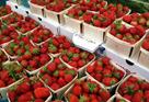 Pleasantville Farmers Market